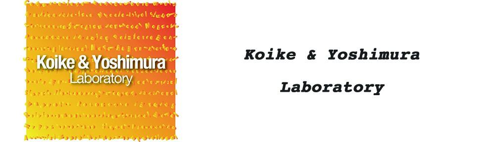 Koike & Yoshimura Lab